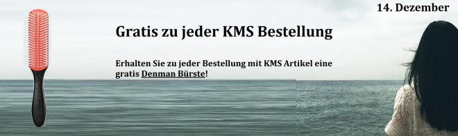 14dezember-denmanbuerste-kms